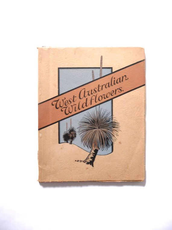 West Australian Wildflowers Illustrated Vintage Botany Book