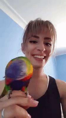 Parrot see parrot do ift.tt/2fLyzHj