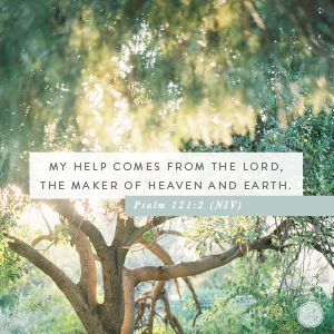 """My help comes from the LORD, the Maker of heaven and earth."" Psalm 121:2 (NIV)"