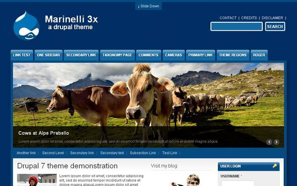 http://www.victoo.net/marinelli-free-drupal-template-464.html
