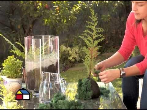 Cómo hacer kokedamas y cuidados esenciales   Cuidar de tus plantas es…
