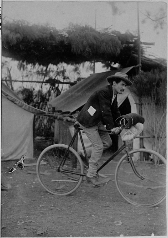 066407PD: Man on a bicycle at a camp, Balladonia, June 1898 http://encore.slwa.wa.gov.au/iii/encore/record/C__Rb3805046?lang=eng