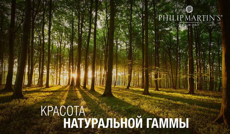 #philipmartins #organicbasecolor #organiccolor #basecolor #haircolor #naturalcolor #natura