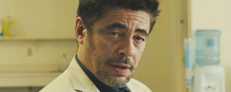 """The Predator: Benicio Del Toro en conversaciones para fichar por la secuela  """"La película dirigida por Shane Black ('Dos buenos tipos') comenzará su rodaje en febrero de 2017. """" Benicio Del Toro se encuentra e..."""