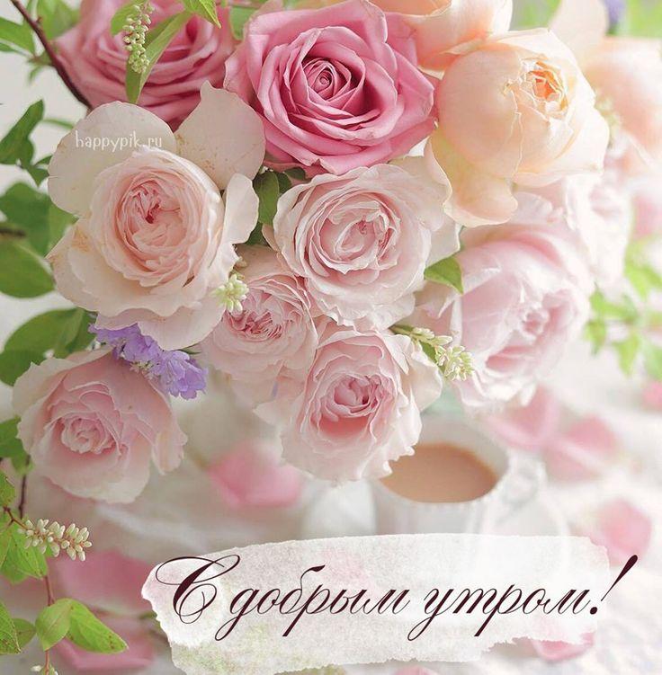 Картинки, открытка с цветами доброго утра