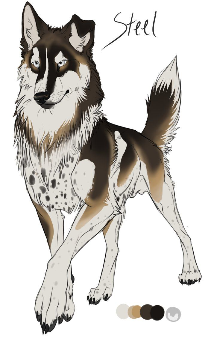 Anime Characters Animals : Esa steel by nakomii on deviantart anime wolves