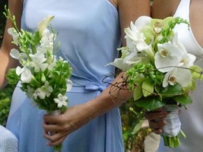 1000 images about bells of ireland on pinterest black backgrounds wedding and green flowers. Black Bedroom Furniture Sets. Home Design Ideas