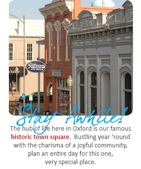 Oxford, MS is a great family destination! Check out the Ole Miss campus (or go to a game!), visit Rowan Oak, or shop on the Square! Visit the Oxford Convention and Visitors Bureau website for more info!