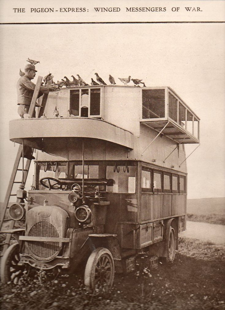 Pigeon truck WW1.... one job that has definitely gone away.... that would be pigeon carrier driver for communications during a World War.....: