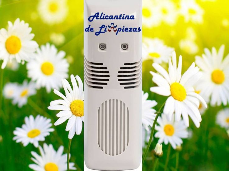 Ambientadores para el hogar alicantina de limpiezas limpiezas en alicante hogar alicante - Ambientadores para el hogar ...
