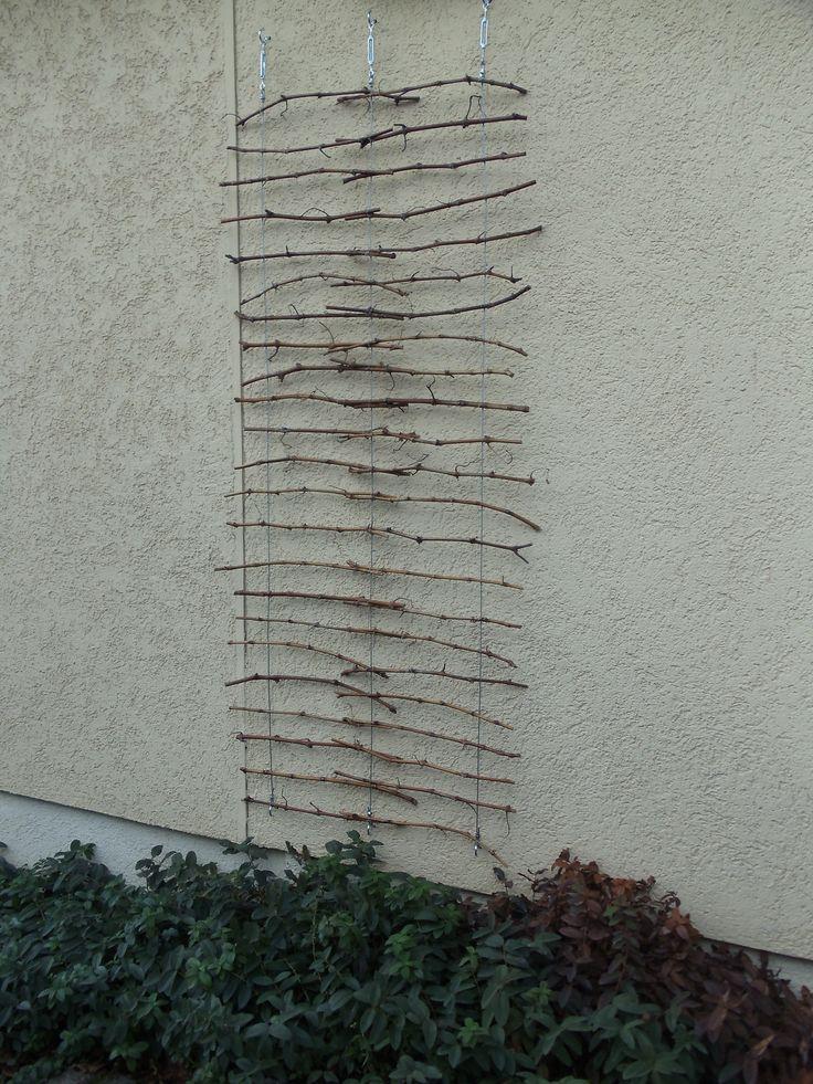 Rankgesrüst aus Drahtseilen und Rebenholz