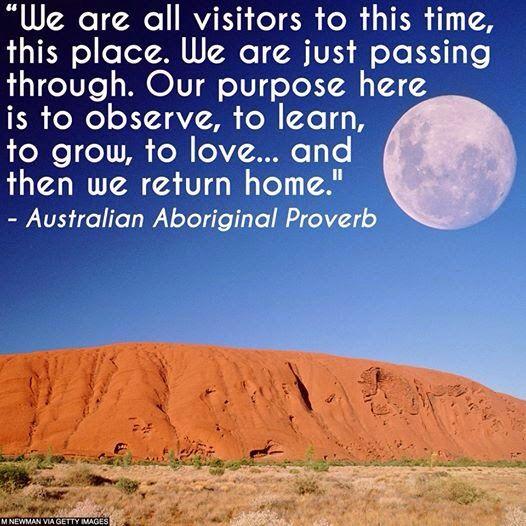69 Best Images About Aboriginal Australia On Pinterest