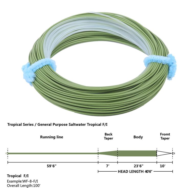 Maximumcatch Tropical Fly Line WF8F/I Floating Intermediate Tip Sea Grass/Clear 100FT Fly Fishing Line