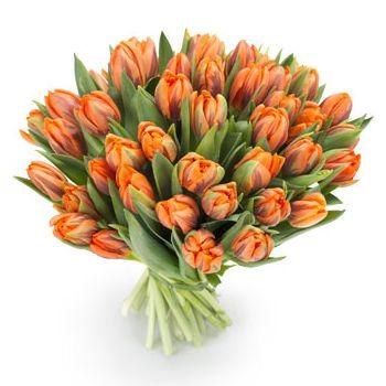 Augustus gaf oranje tulpen aan Hazel toen hij haar vertelde dat ze samen naar  Nederlands gingen gaan.