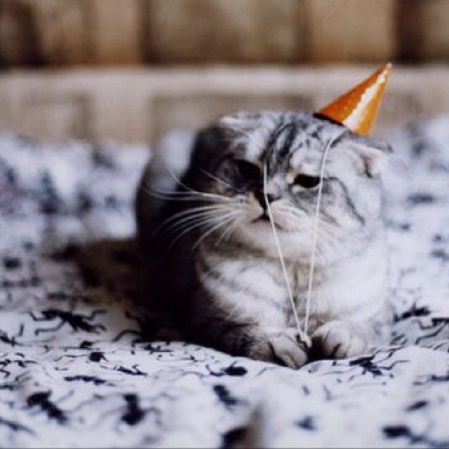 188 Best Images About ~ Birthday Month ~ On Pinterest