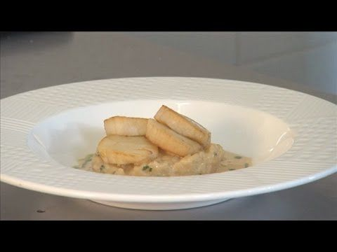 Scallop Resources for Seafood Chefs: Scallop Recipe: Pan-fried Scallops on Lemon Risotto with a Scallop Velouté. Demonstrated by Richard Johns, Artisan Restaurant, Hessle