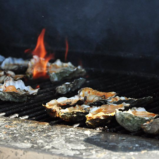 Love grilled oysters!!  Perfect for summer.  Just the thought of them are making my mouth water.
