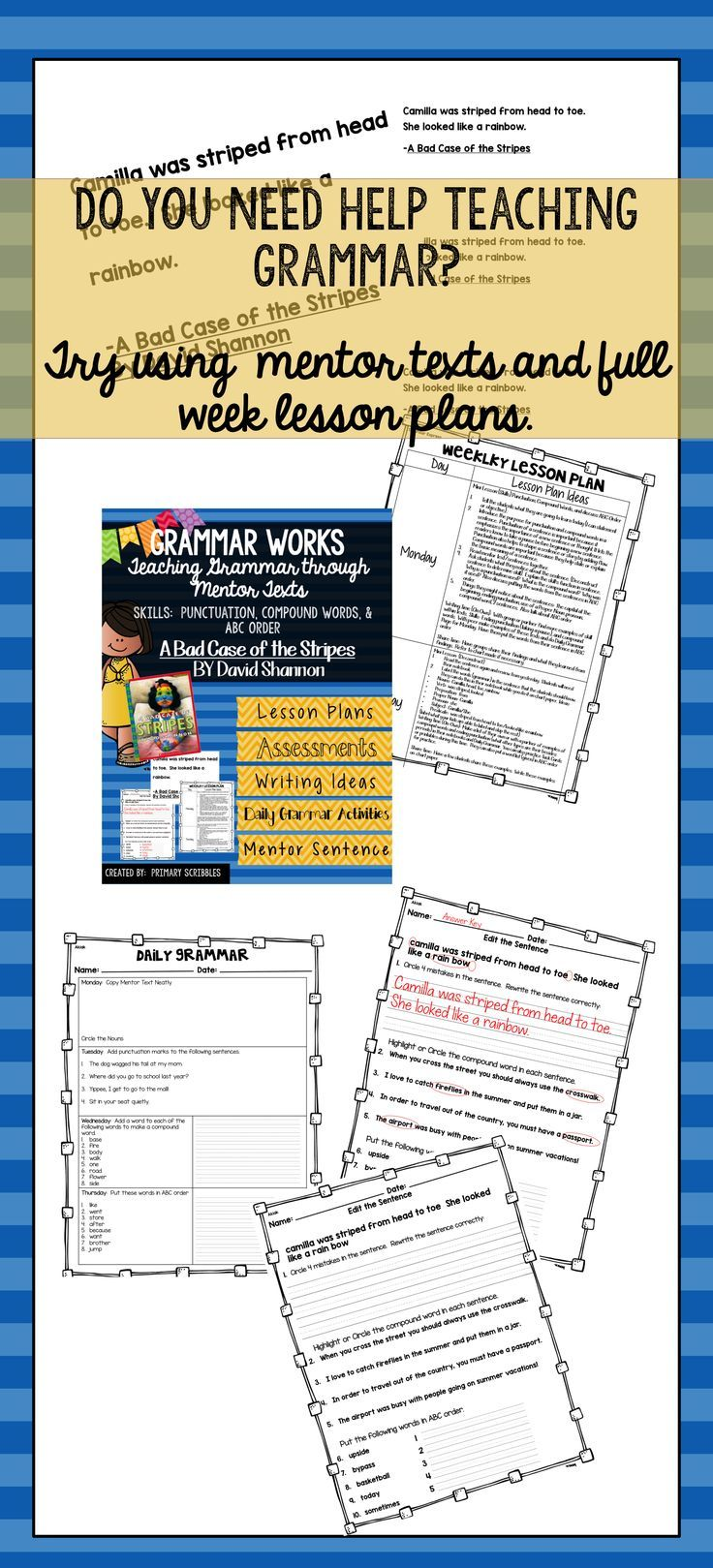 worksheet A Bad Case Of Stripes Worksheets 78 images about bad case of stripes on pinterest author studies grammar works with mentor text a the stripes