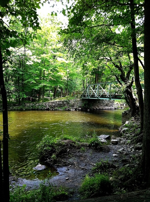 Ramapo Reservation - New Jersey Trails | AllTrails.com