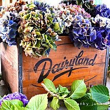 Hometalk :: If you aren't yet drying hydrangeas, you're missing a wonderful decor…