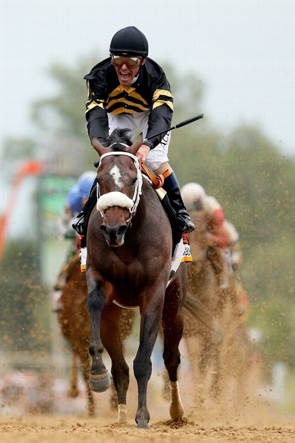 1000+ images about Race Horses on Pinterest | Horse racing ...