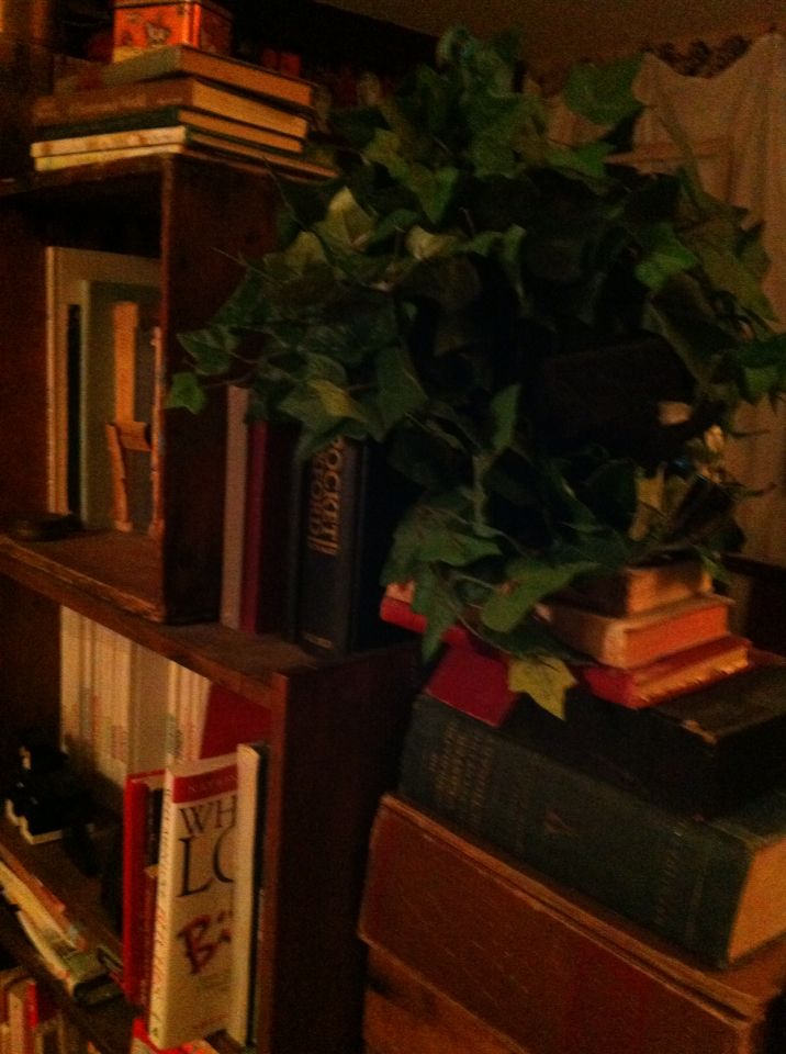 Just added the vines in a mason jar to my homemade bookshelf (made from old crates) love how it turned out...
