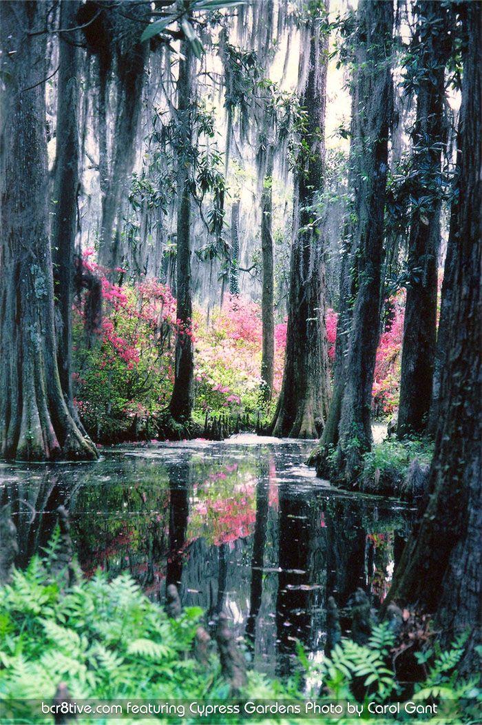 Cypress Gardens, FL