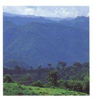 San Lucas se considera un refugio y centro de especiación bilógica de origen pleistocénico.