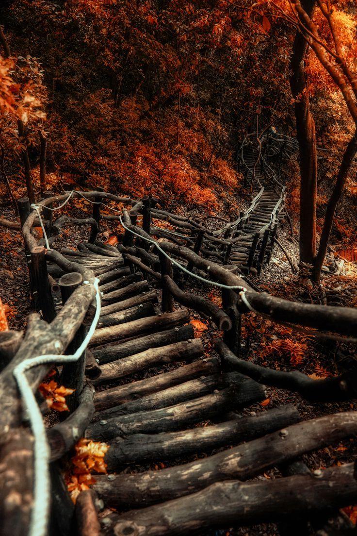 Der Serpentinenweg von Hanson Mao – Awesome View…