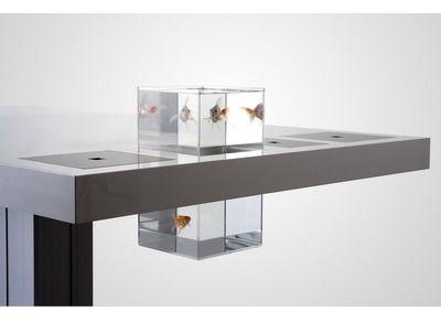 Aquarium en acrylique transparent pour bureau