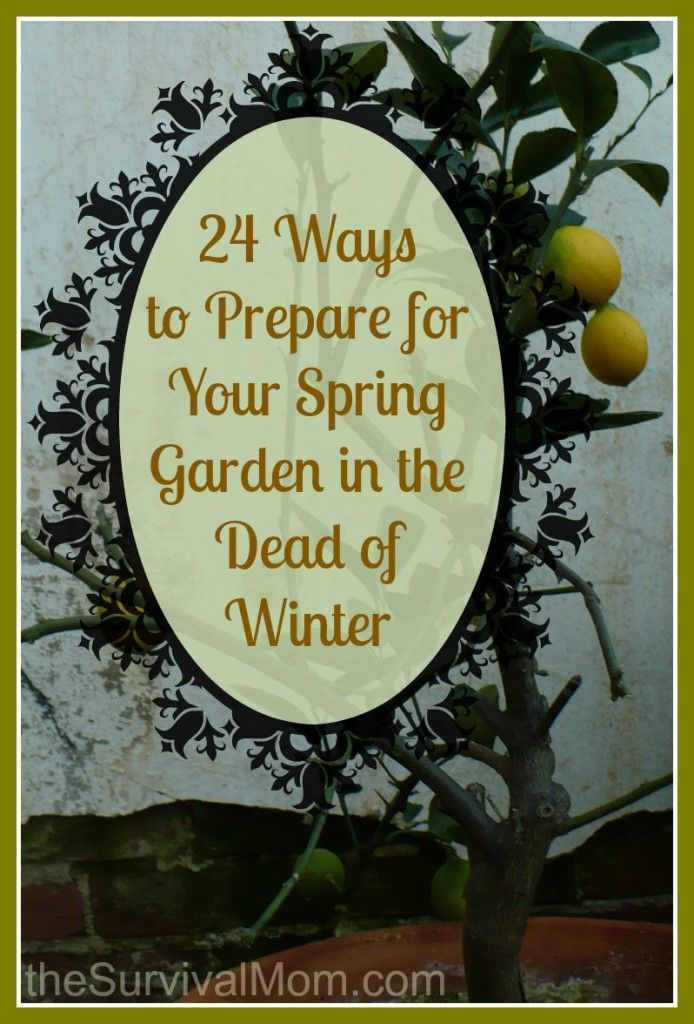 24 Ways to prepare for your spring garden in the dead of winter | via www.TheSurvivalMom.com