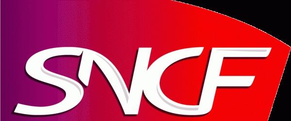 Una settimana dopo l'arrivo di Stagecoach in Francia, la SNCF ha risposto annunciando l'introduzione di collegamenti internazionali di autobus a lunga distanza.    Le SNCF ( ferrovie francesi) non permetterà che gli inglesi sbarchino in Francia, con i loro autobus senza reagire.