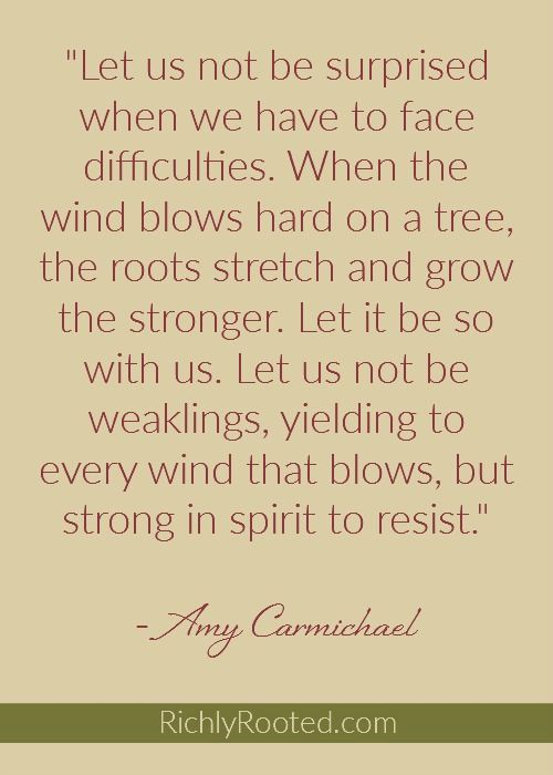 I love this quote by the missionary Amy Carmichael! We need to sink our roots in deep and hold fast to Christ.