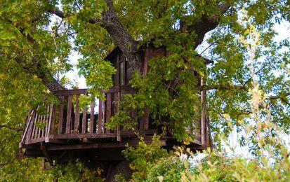 Oltre 25 fantastiche idee su case sull 39 albero per bambini - Come costruire una casa sull albero ...