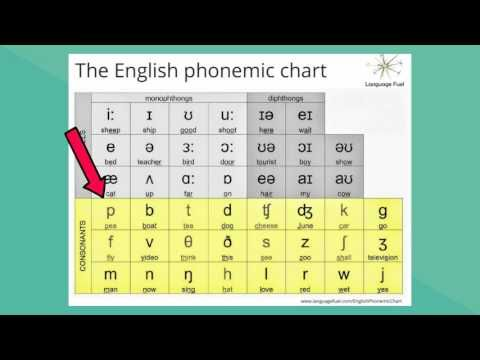Best Phonetics Images On   Teaching Ideas  Goals