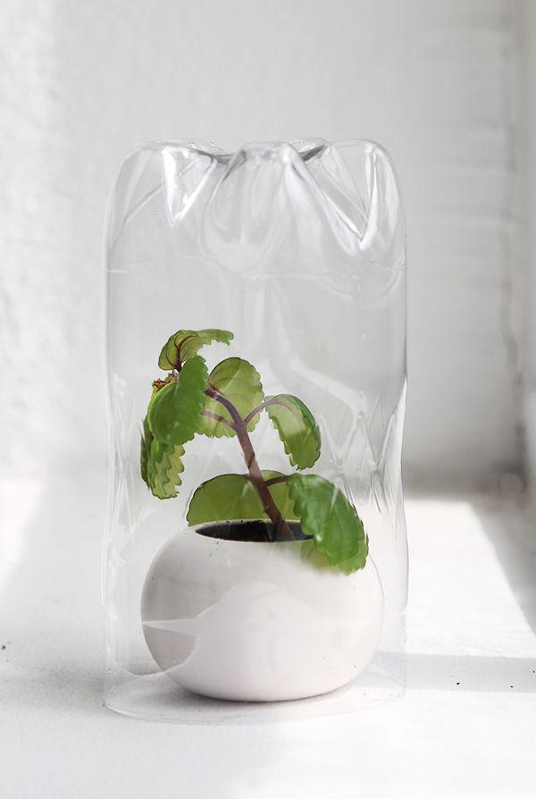DIY-tip: make a mini greenhouse of a plastic bottle Read more att Scandinavian interior blog www.trendenser.se