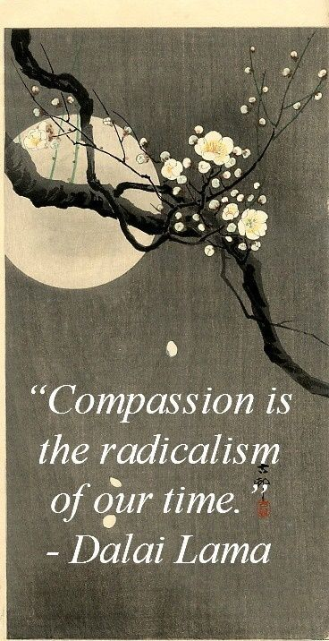 Compassion is the radicalism of our time
