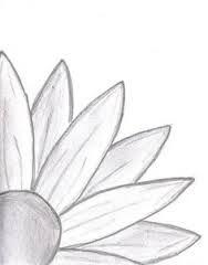 sunflower? i guess
