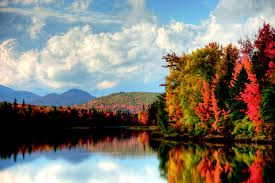 Image result for fall foliage map new england