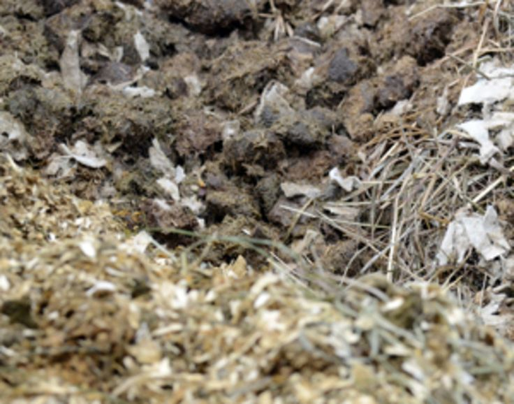 Solve the Horse Manure Pile Problem. Eco-friendly solutions can help manage manure on your farm through horse manure composting, spreading horse manure and more.