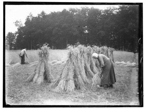 Doetinchem Eem boer en boerin op het land bij Doetinchem. 1919 Collectie Stadsarchief Amsterdam #Gelderland #Achterhoek