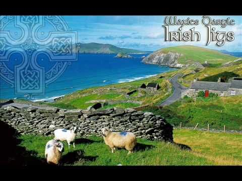 Traditional Irish Jig Medley: Geese In The Bog / The Wind That Shakes Th...