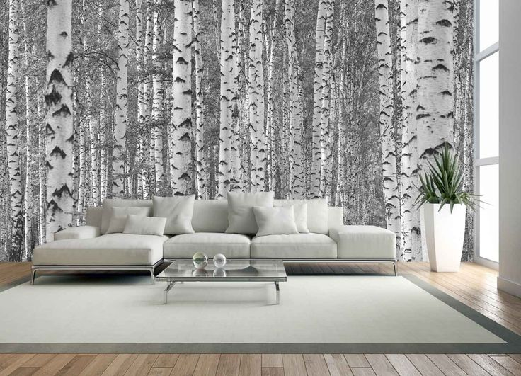 15-Feet wide by 9-Feet high. Prepasted wallpaper high quality mural from a photo of: Birch Trees in Black and White. Our murals are easy to hang remove and reuse (hang again) If U do as in our video - - Amazon.com
