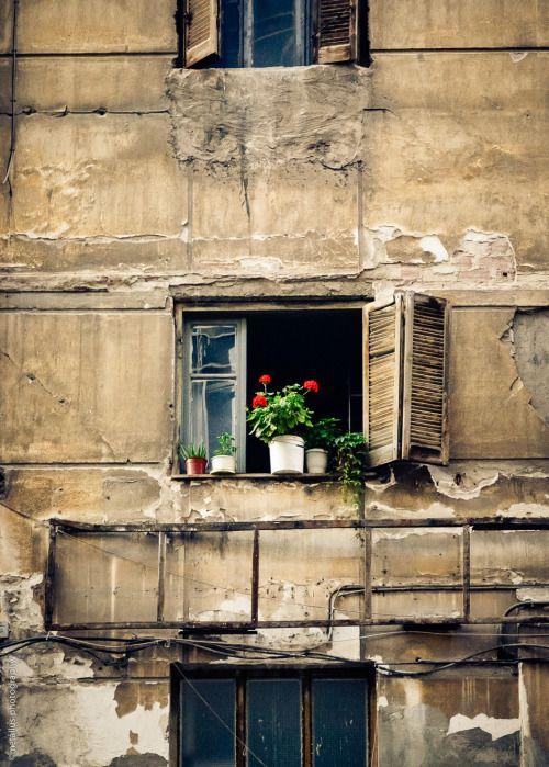 valshe spice  for windows