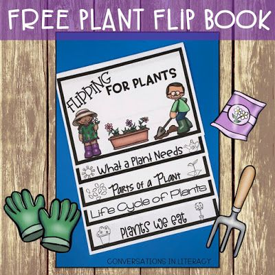 Plant Activities!  Parts of a Plant and Plant Life Cycle- Flipping for Plants Flip book for plant unit in the classroom.  kindergarten, first grade, second grade, third grade