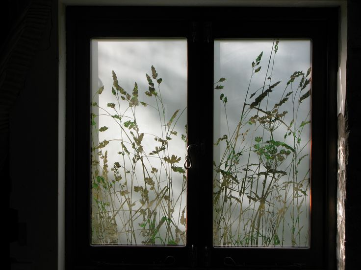 Wild grasses etched into double glazed kitchen windows, creating privacy from the street poutside