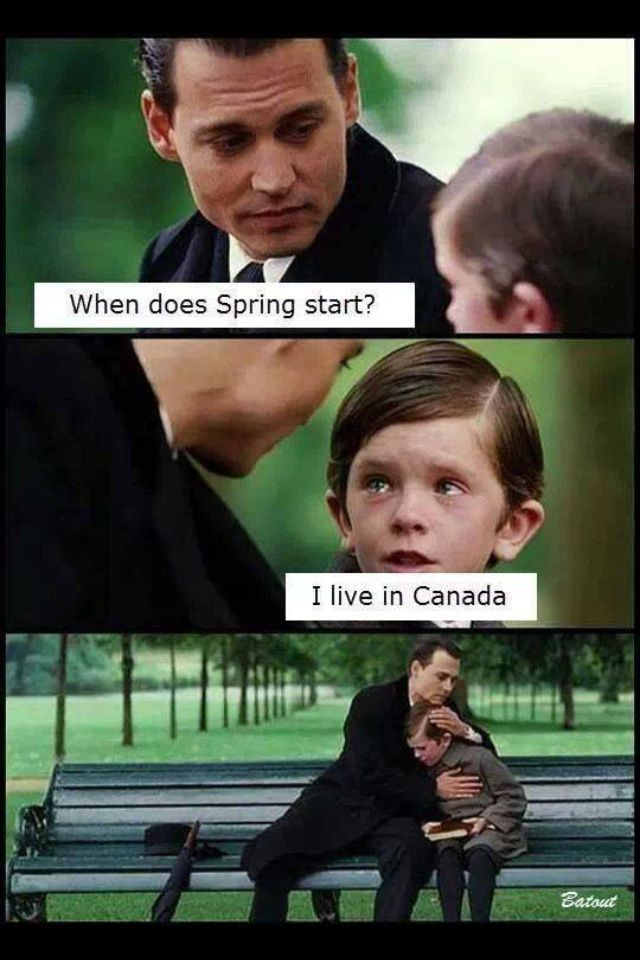 When does Spring start?  // funny pictures - funny photos - funny images - funny pics - funny quotes - #lol #humor #funnypictures