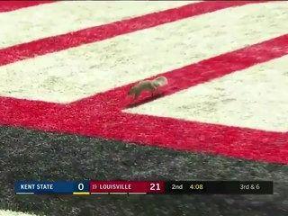 Acclamations d'un écureuil qui marque un Touchdown sur un terrain de Football Américain avant un match !