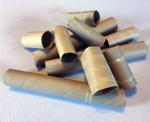 DIY Toilet Paper Roll Toys for Small Pets