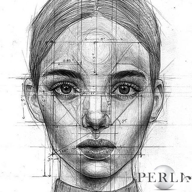 Cual Es La Importancia De La Proporcion En El Dibujo Dibujo Net Dibujo De Retrato Dibujos De Caras Dibujar Arte